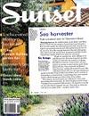 Sunset Sea Harvester