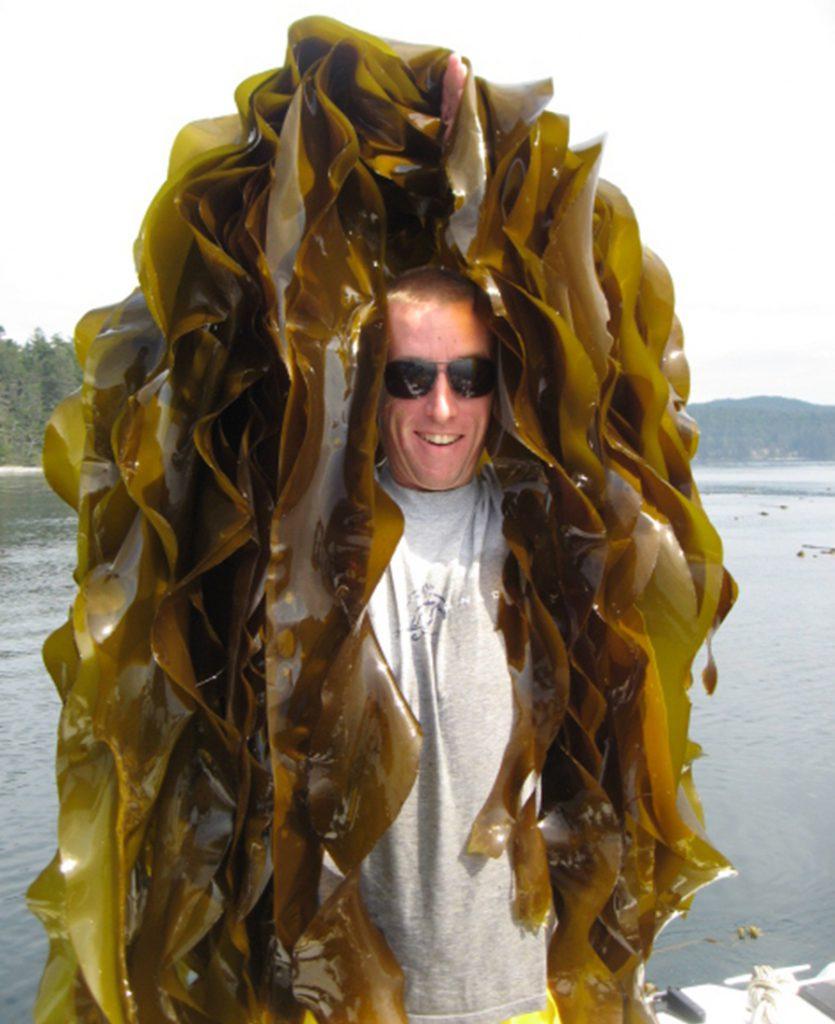 adam sea weed head
