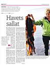 Kokets – Swedish Magazine