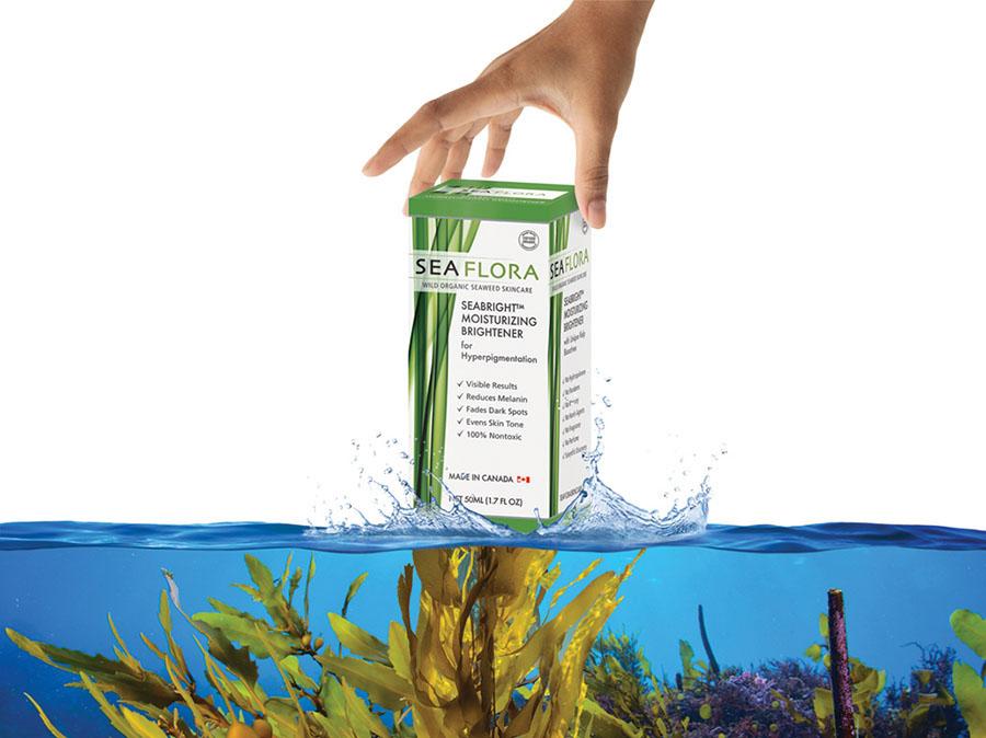 seabright moisturizer