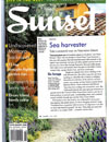 Sunset: Sea Harvester