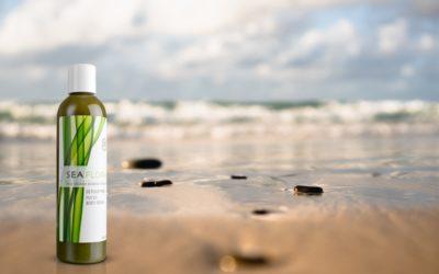 Does Seaweed Have Healing Properties?