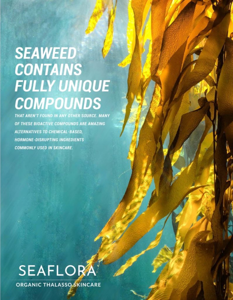 How Seaweed Detoxify the Body