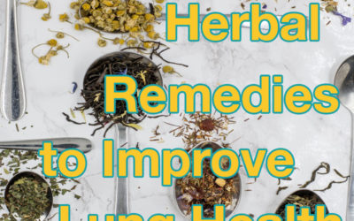 Respiratory Issues? Here Are Our Favourite Herbal Remedies to Improve Lung Health