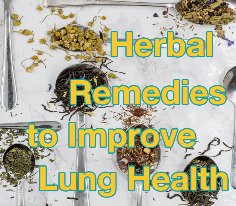 Herbal Remedies to improve lung health